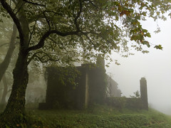 where are we? (ekelly80) Tags: azores portugal sãomiguel october2019 furnas hike foggy fog woods forest green mysterious building ruins spooky view