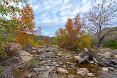 DSC_3290 (farajalhattab) Tags: sabino canyon arizona tucson sky cloud rocks water trees