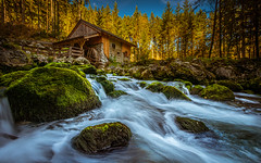 Autumn hike (gregor158) Tags: austria europe österreich forest trees tree mountains mountain moss stream water autumn fall mill hut landscape nature golling travel places