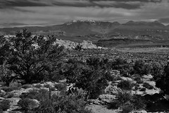 Being in Nature is the Antidote to to Exhaustion (Black & White, Arches National Park)