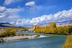Indus and Stakna (_Amritash_) Tags: stakna staknamonastery indus indusvalley autumn ladakh autumninladakh river landscapes travelindia mountains colorsofladakh indusandstakna himalayas himalayanlandscape
