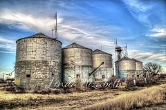 249/365 (lindaelizabeth) Tags: silos smalltown merkel texas five bluesky abandoned old american historic industry grain farming