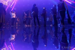 20191129-37-TeamLAB Borderless exhibition (Roger T Wong) Tags: 2019 asia japan rogertwong sel24105g sony24105 sonya7iii sonyalpha7iii sonyfe24105mmf4goss sonyilce7m3 teamlab teamlabborderlelss tokyo art digitalart graphics lights museum travel