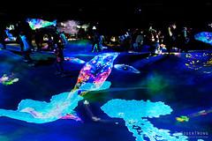 20191129-43-TeamLAB Borderless exhibition (Roger T Wong) Tags: 2019 asia japan rogertwong sel24105g sony24105 sonya7iii sonyalpha7iii sonyfe24105mmf4goss sonyilce7m3 teamlab teamlabborderlelss tokyo art digitalart graphics lights museum travel