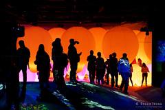 20191129-44-TeamLAB Borderless exhibition (Roger T Wong) Tags: 2019 asia japan rogertwong sel24105g sony24105 sonya7iii sonyalpha7iii sonyfe24105mmf4goss sonyilce7m3 teamlab teamlabborderlelss tokyo art digitalart graphics lights museum travel