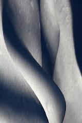 Snow shadows (cheryl.rose83) Tags: snow shadows