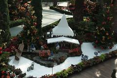 The Repair Shop (lamwaileong) Tags: finland flowerdome gardensbythebay lapland poinsettiawishes rovaniemi sg santaclausvillage singapore therepairshop