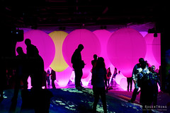20191129-45-TeamLAB Borderless exhibition (Roger T Wong) Tags: 2019 asia japan rogertwong sel24105g sony24105 sonya7iii sonyalpha7iii sonyfe24105mmf4goss sonyilce7m3 teamlab teamlabborderlelss tokyo art digitalart graphics lights museum travel