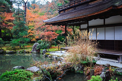 Ginkakuji Temple (Patrick Foto ;)) Tags: architecture asia autumn beautiful beauty buddhism buddhist building butchart colorful culture design fall famous garden gardening ginkakuji green heritage japan japanese kyoto landmark landscape leaf maple nature old outdoor park path pavilion peaceful pond red religion season seasonal silver temple tokyo tourism traditional travel tree view water yellow zen kyōtoprefecture