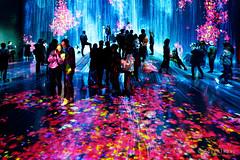 20191129-51-TeamLAB Borderless exhibition (Roger T Wong) Tags: 2019 asia japan rogertwong sel24105g sony24105 sonya7iii sonyalpha7iii sonyfe24105mmf4goss sonyilce7m3 teamlab teamlabborderlelss tokyo art digitalart graphics lights museum travel