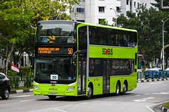 SBS Transit MAN ND323F (A95) Gemilang (nighteye) Tags: sbstransit 新捷运 man nd323f a95 gemilangcoachworks sg6041e service50 singapore bus