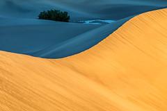 First Light (Kirk Lougheed) Tags: california deathvalley deathvalleynationalpark mesquitedunes mesquiteflat usa unitedstates creosote dune dunes landscape nationalpark outdoor park plant sand sanddune sanddunes