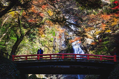 Minoh waterfall (Patrick Foto ;)) Tags: autumn background beautiful beauty color colorful fall famous foliage forest garden green holiday japan japanese kansai kyoto landmark landscape leaf leaves maple mino minoh minoo mountain national natural nature orange osaka outdoor park place red scenery season stone tokyo tourism tourist traditional travel tree water waterfall yellow minooshi osakaprefecture