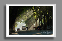 First rays of light on Phan Dinh Phung street in winter. (Vinh.NT photos) Tags: ray light hanoi vietnam street crowed bus contrast