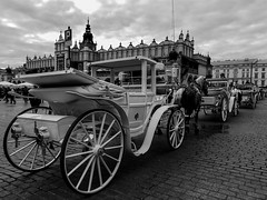Krakow market square (Myra_Je) Tags: krakow poland 2019 travel blackandwhite oldtown cracrovia cracovie polonia polska horses carriage carruaje viajes mundo europa europe world market square old town