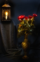 Candlelight And Roses. (williams.darrell53) Tags: still life canle lantern light low key canon australia dark
