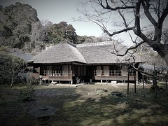 (Human-Faced Bun & Honey Pudding) Tags: architecture historical traditional house mansion thatched roof tree garden asian