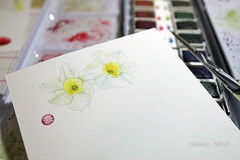 watercolor painting (Annie Illustration) Tags: watercolor watercolorpainting art painting flowers