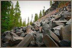 1075. Eastern Sierra Nevada 65 - Devils Postpile National Monument 3 (Oscardaman) Tags: nikond850forinquiresaboutanyofmyphotos pleaseemailmeatoscarwitzgmailcom 1075 eastern sierra nevada 64 devils postpile national monument 3