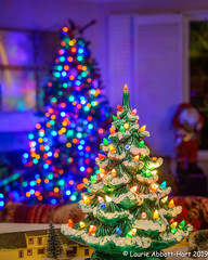 -20191207Home for Christmas6-Edit (Laurie2123) Tags: laurieabbotthartphotography laurieturner laurieturnerphotography laurie2123 christmas