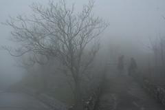 IMG_6770 - nebbia (molovate) Tags: inverno tafme nebbia canon eos 350d digital volate molovate freddo pioggia limbp purgatorio