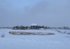 Blue House (fridgeirsson) Tags: iphone 11 pro max iceland winter