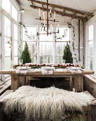 Rustic Porch Dining (Heath & the B.L.T. boys) Tags: christmas porch diningroom bench candle tablescape moss apple greenhouse garland ladder