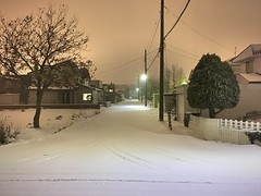 Blizzard to the West 1 (sjrankin) Tags: 8december2019 edited kitahiroshima hokkaido japan snow weather evening lights lines wires road blizzard wind trees houses neighborhood