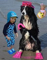 Zu Besuch bei Asha / Visiting Asha (ursula.valtiner) Tags: puppe doll luis bärbel künstlerpuppe masterpiecedoll hund dog bordercollie asha conniekells meer sea schwimmen swim ball