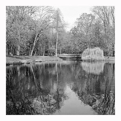 reflection (rcfed) Tags: rolleiflex sl66 monochrome hp5 rodinal lake tree reflection bridge water