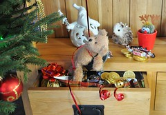 """Flickr Friday """"Drawer"""" - Caught In The Act! (Hoglands) Tags: drawer flickrfriday christmas teddy teddybear"""