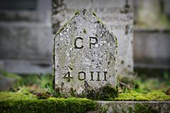 Stèle (olivier.ghettem) Tags: paris france cimetière cimetièredupèrelachaise stèle graveyard cemetery automne autumn
