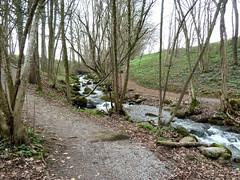 Switzerland, Schwyz, Wollerau, Krebsbach P1020009 (Tony Staub) Tags: water switzerland schwyz forrest river wollerau spring