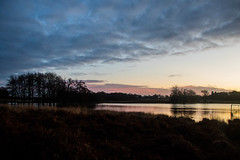 Richmond Park Sunrise December 2019 (www.kevinoakhill.com) Tags: richmond park sunrise december 2019 beautiful gorgeous winter low sun cloud blue orange red yellow sk skies sunny cold cool chilly pen ponds thames river lake water wet deer fallow male female man woman ball crystal ray rays incredible wildlife west borough canon eos 7d mark 2 ii camera