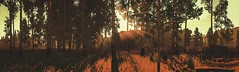 Firewatch (Graff Metal) Tags: game panorama firewatch nature sunset evening forest