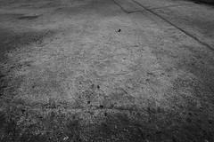 Lost Ball (lesliegill) Tags: japan street minimalism blackandwhite panasonics1 sigma1424dgdn sigma