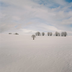 antique camera photography (steffos1986) Tags: vintage analog film landscape nature trees snow ice winter agfa jsolette sky clouds countryside outside outdoor view scenery bea beautiful kodak ektar fineart norway europe scandinavia
