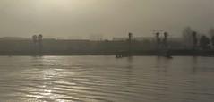 Misty Kiss (Peter ( phonepics only) Eijkman) Tags: amsterdam zaanstad zaandam zaan zaanstreekwaterland ferry pont pontveer gvb hempont nederland netherlands nederlandse noordholland water canals holland