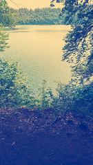 IMG_20190720_135103005-2 (schoolartBYschoolboy) Tags: auvergne puydedome lake forest vulcan