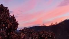 Egunsentia ekialdetik (eitb.eus) Tags: eitbcom 23850 g1 tiemponaturaleza tiempon2019 amanecer gipuzkoa oñati gurutzeazcarate
