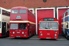 Preserved Ribble Leyland Atlantean MCW 1686 NRN586 & PMT Leyland Leopard Marshall 1128 TVT128G at the Museum of Transport Greater Manchester (Mark Bowerbank) Tags: preserved ribble leyland atlantean mcw 1686 nrn586 pmt leopard marshall 1128 tvt128g museum transport greater manchester