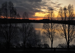 behind the trees (Johnson Cameraface) Tags: 2019 november autumn olympus omde1 em1 micro43 mzuiko 1240mm f28 johnsoncameraface doncaster lakeside sunrise southyorkshire trees