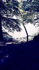 IMG_20190720_135028239-2 (schoolartBYschoolboy) Tags: auvergne puydedome lake forest vulcan
