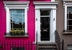 Pink (mlk.dahoui) Tags: facade nottinghill door black fence windows colours stairs steps reflection flowers beauty picture nikon d750 london uk famous photo photography urban city town