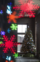 JMC_2157snowflakelights2jsm (JayEssEmm) Tags: tower hill botanic garden boylston massachusetts lights holiday christmas xmas