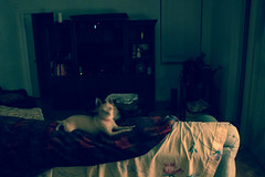 Ghostly Chi (jasonhanratty1) Tags: canon eos 600d