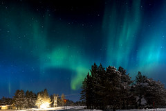 Z19_0091 LT (Zoran Babich) Tags: auroraborealis northernlights finland finska suomi lapland lappi landscape nightsky night lainio