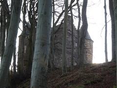 Wallace Tower, Seaton Park, Aberdeen (iainh124a) Tags: iainh124a scotland aberdeen uk sony sonycybershot dschx95 dschs95 cybershot dx95