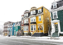 First Snowfall on Jellybean Row (Karen_Chappell) Tags: newfoundland nfld stjohns city snow weather snowy snowing december rowhouse houses house home jellybeanrow canada atlanticcanada avalonpeninsula eastcoast road yellow white green architecture buildings blue brown colour color colours colors colourful multicoloured canonef24105mmf4lisusm windows downtown urban