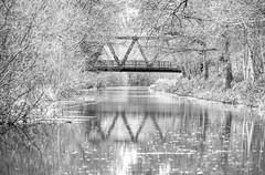 Basingstoke Canal Claycart-Eelmoor 8 December 2019 028b (paul_appleyard) Tags: basingstoke canal farnborough aldershot hampshire hants december 2019 claycart bridge